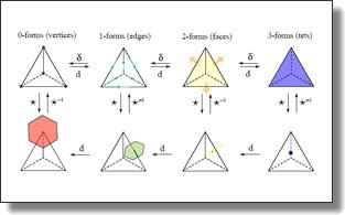 http://www.geometry.caltech.edu/Images/DDForms.jpg